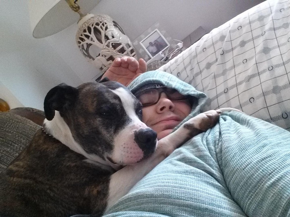 My friend's pit bull decided to wake me up for a cuddle session this morning. Reddit, meet Kevin
