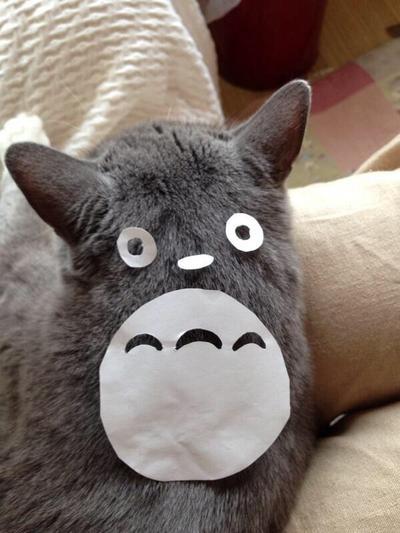 My Neighbor's cat Totoro